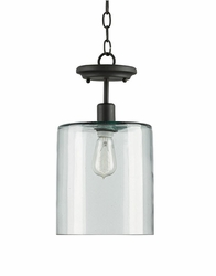 Panorama Pendant Light