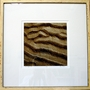 Sand Ripples 3 Giclee