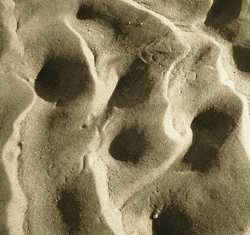 Sand Ripples 9 Giclee