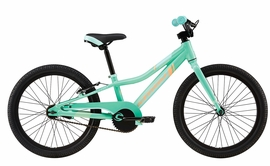 "2017 Cannondale Trail 20"" Single-Speed Girl's Turquoise"