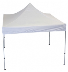Celina 10 x 10 Fast Shade Pop Up Tent with Steel Frame  sc 1 st  eCanopy.com & 10 x 10 Fast Shade Pop Up Tent with Steel Frame