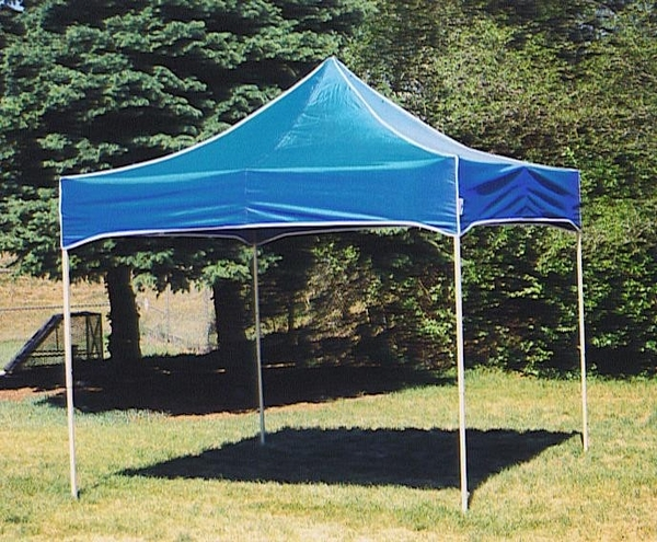 Kd Kanopy Party Shade Steel 10 X 10 Canopy Tent