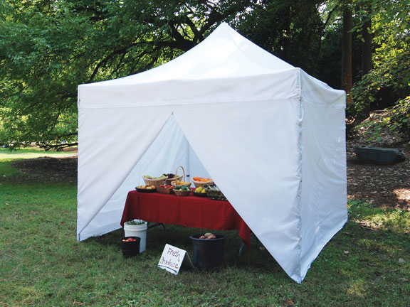 10 Foot Tent : King canopy foot tuff tent instant