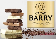 Cacao Barry Chocolate Discs