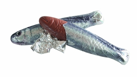 "Michel Cluizel French Chocolate - ""Sardines En Chocolat Au Noir"" Dark Chocolate Sardines Bulk Bag of 20. (Single)."