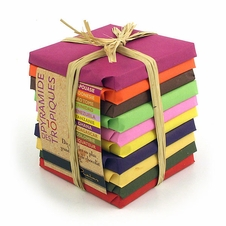 Pralus French Chocolate - 10 Piece Variety of 50 Gram Squares, 75% Cocoa, 500g total (Single)