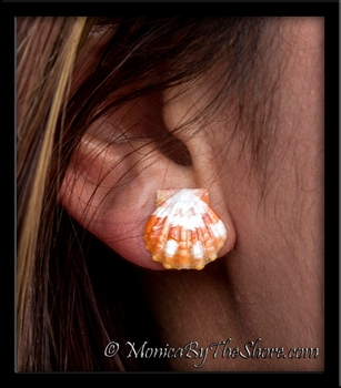 Baby Orange & White Hawaiian Sunrise Shell Post Earrings