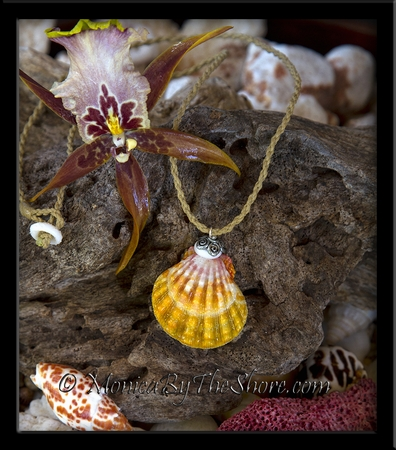"Bali ""Country Style Hawaiian Sunrise Shell and Puka Shell Cord Necklace"