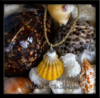 "Bali ""Country Style"" Hawaiian Sunrise Shell and Puka Shells Surfers Corded Necklace"
