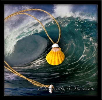 Big Country Hawaiian Sunrise Shell & Puka Shell Cord Necklace