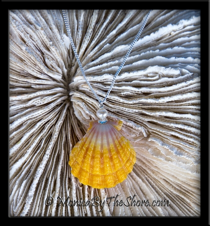 Bright Ruffled Hawaiian Sunrise Shell and Cultured Pearl Silver Necklace
