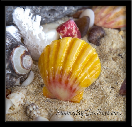 Classic Hawaiian Sunrise Shell Ring Pink Yellow White Sterling Silver Band