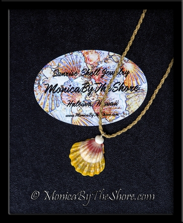 """""""Country Style"""" Multi Colored Hawaiian Sunrise Shell and Puka Shell Twisted Cord Necklace"""