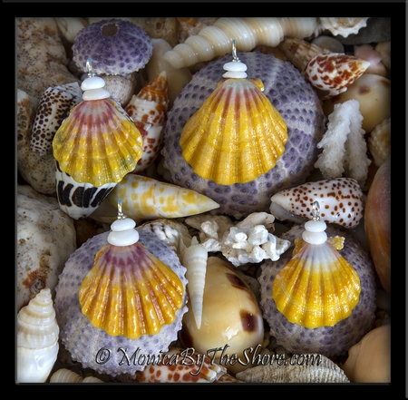 """""""Country Style"""" Sunrise Shell & Puka Shells Classic Colors Necklace"""