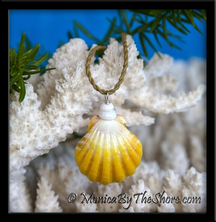 """""""Country Style"""" Yellow and White Hawaiian Sunrise Shell and Puka Shells Necklace"""