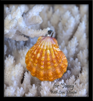 "Custom for ""Jenny"" Jumbo Peach Colored Hawaiian Sunrise Shell Pendant"