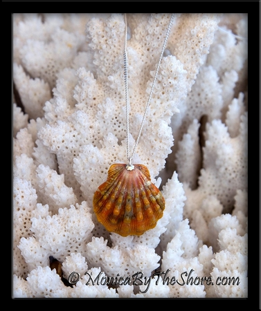 Deep Orange Hawaiian Sunrise Shell Silver Curb Chain Necklace