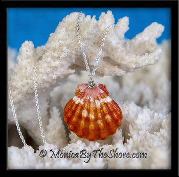 Deep Orange Hawaiian Sunrise Shell Silver Rope Chain Necklace
