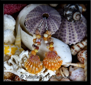 Fantasy Seashells Hawaiian Sunrise Shell & Seashell Earrings