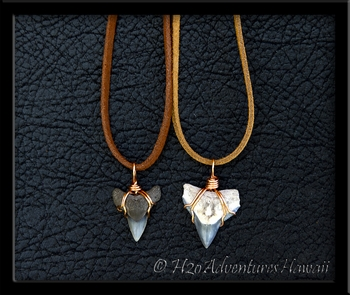 Fossil Bull Shark Tooth Rawhide Necklace