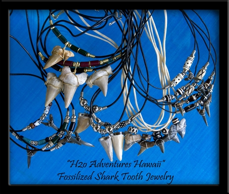 "Fossilized ""Otodus"" Sharks Tooth & Dyed Wooden Bead Leather Cord Necklace"