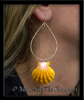 Giant & Brilliant Hawaiian Sunrise Shells on Classy Gold Teardrop Hoops Earrings