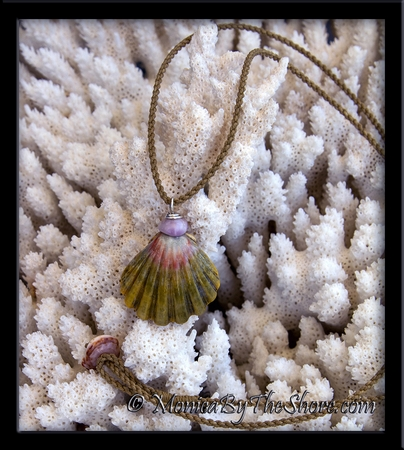 "Large Green & Pink ""Moonrise"" Sunrise Shell & Chunky Puka Shell Twisted Cord Necklace"