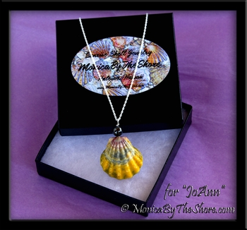 Hawaiian Rainbow Sunrise Shell with Black Pearl Necklace