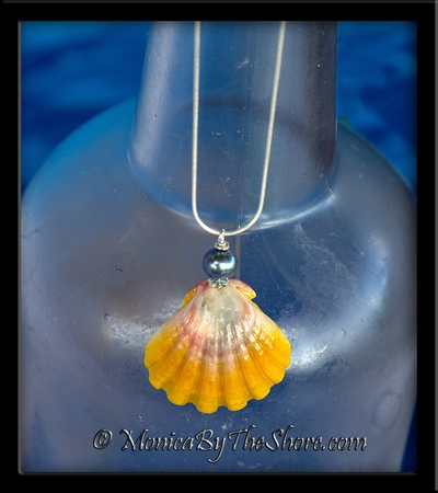 Hawaiian Sunrise Shell and Cultured Black Pearl Necklace