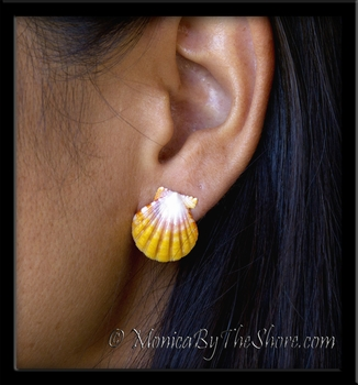 Hawaiian Sunrise Shells Post Earrings Silver Studs Pair 2