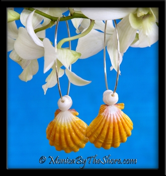 "Huge Hawaiian Sunrise Shell and Puka Shells ""Big Hoop"" Earrings"