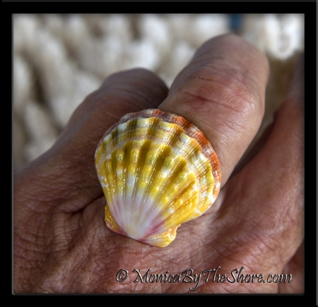 Multi Color Ruffled Hawaiian Sunrise Shell Sterling Silver Ring