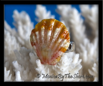Orange White Pink Sunrise Shell Silver Pinky or Toe Ring