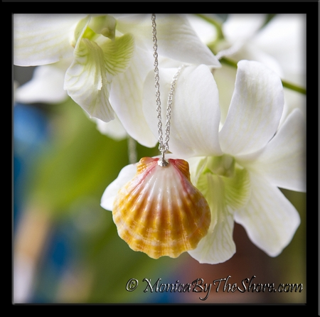 Soft Pastel Hawaiian Sunrise Shell Silver Rope Chain Necklace