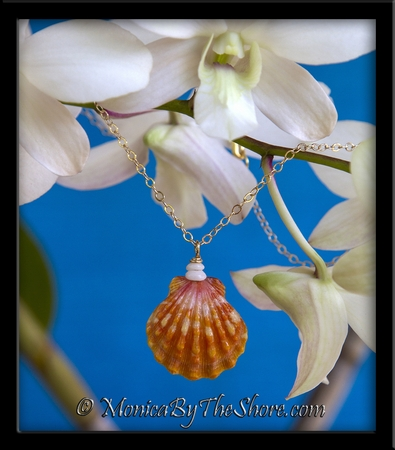 """""""Town & Country"""" Style Hawaiian Sunrise Shell & Puka Shells Gold Necklace"""