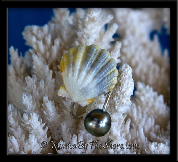 Tri Color Sunrise Shell and Tahitian Black Pearl Fine Silver Ring