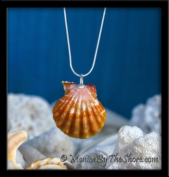 Double Whole Pair Hawaiian Sunrise Shell Sterling Silver Necklace