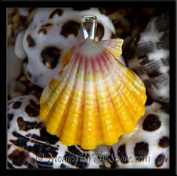 Yellow Pink & White Bright Hawaiian Sunrise Shell Silver Necklace