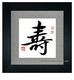 Professional Chinese Calligraphy Framed Art - Longevity #250