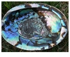 Large Abalone Shell Smudge + Incense Vessel
