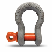 "CM 1"" Alloy Screw Pin Anchor Shackle - 12-1/2 Ton WLL"