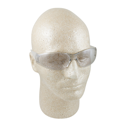 ERB Boas Clear In / Out Mirror Safety Glasses