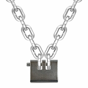 "Laclede 3/8"" Security Chain Kit - 4 ft Chain & Padlock"