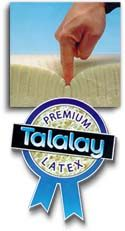 "6"" Talalay  Blended Latex Core"