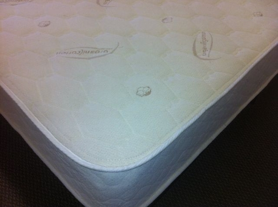 Twin XL Naturalux Mattress