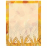 Amber Waves Fall & Autumn Border Paper
