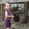 L'ovedbaby | Shorts: Eggplant