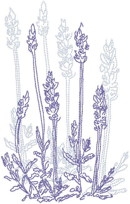 Dried Lavender 1 Machine Embroidery Designs