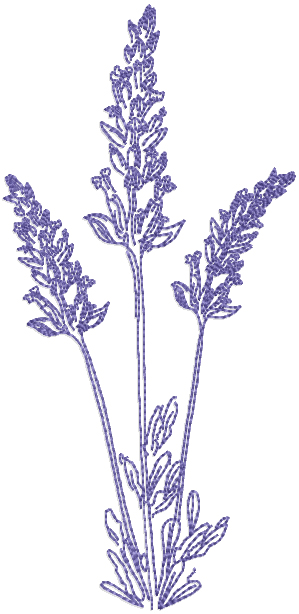 Lavender Embroidery Pattern Choice Image Knitting Patterns Free