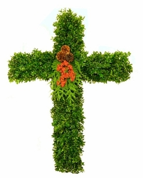 Boxwood Cross